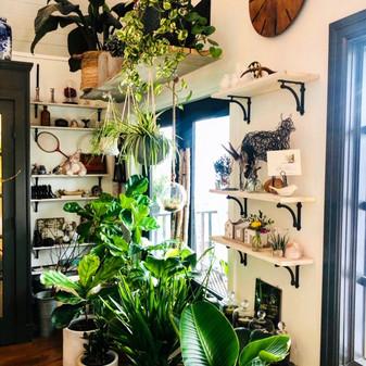 Gardenia Flower Boutique Flower Shop.JPG