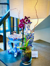 Orchid Pland Calgary Delivery.jpg