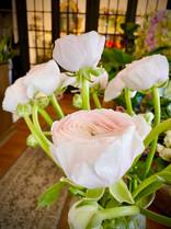 Ranunculus Flowers Florist Calgary.jpg
