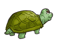 Turtle 012921.png