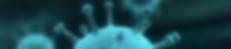 Screen Shot 2020-04-03 at 02.42.14.png
