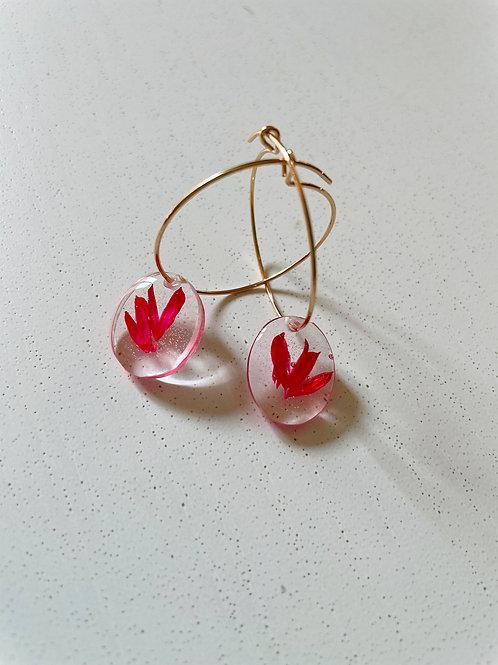 Orecchini con phalaris rosso - Disponibili con montatura in argento 925 dorata