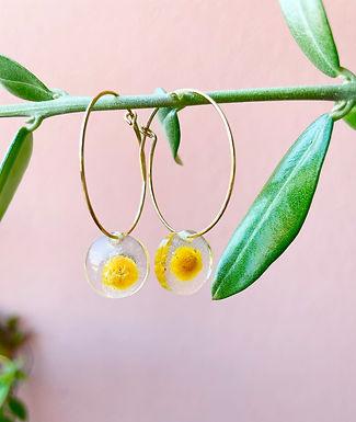 Orecchini con mimosa - disponibile con montatura in argento 925