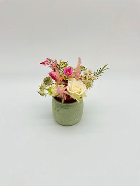 Eco Bloomy N°7