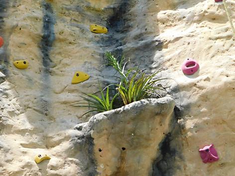 Rocas artificales