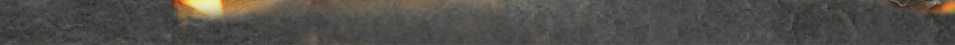 banner_5.png
