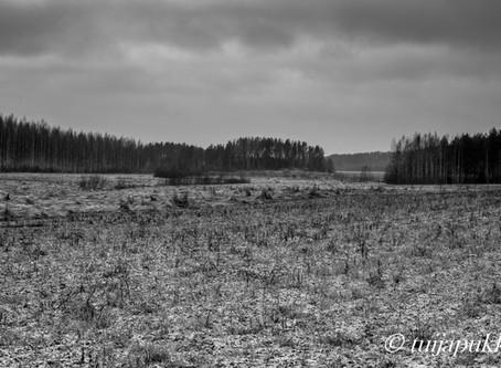 karu talvinen pelto