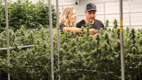A Couple Of Things with Maine Craft Cannabis