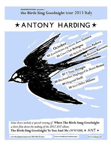 Italian tour poster 2013 - Antony Harding