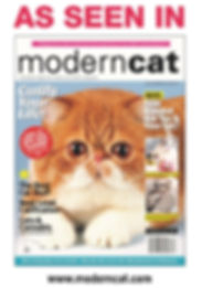 modern cat issue.jpg