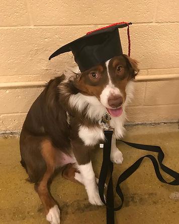 winston graduation.jpg