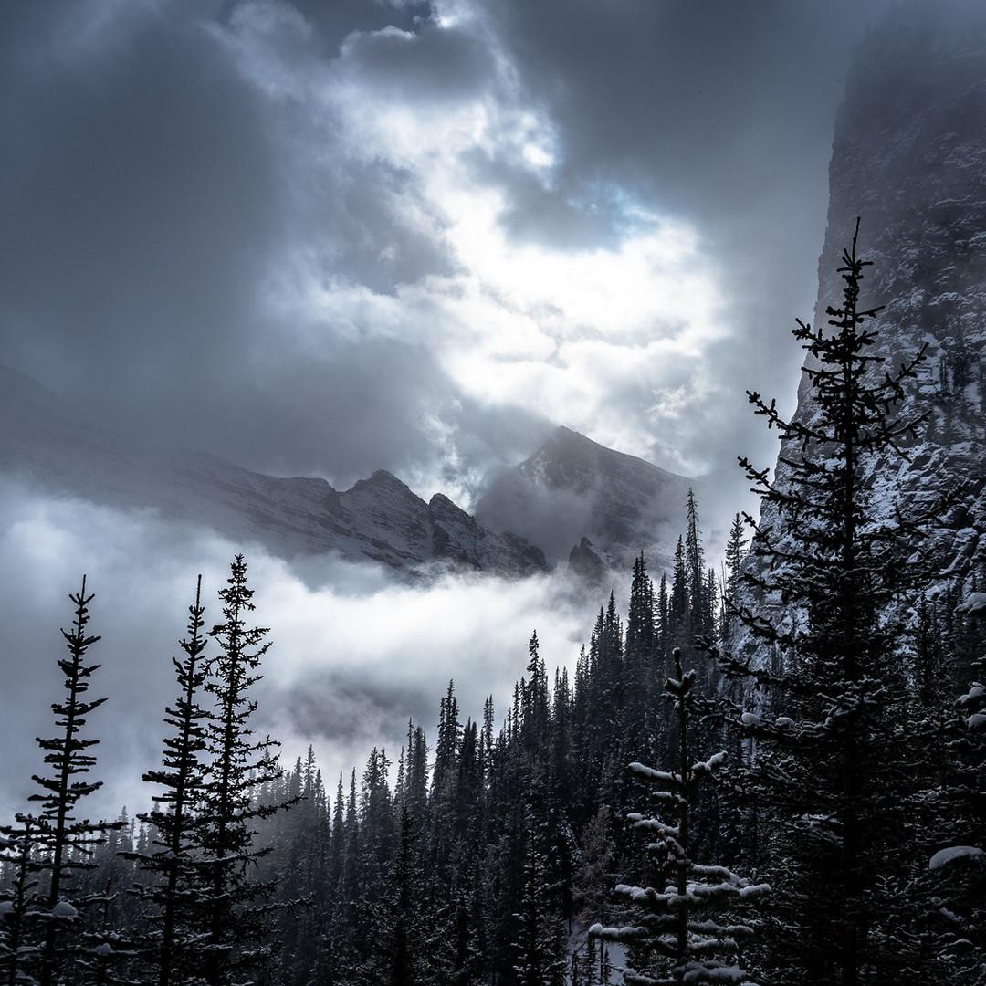 Dark Rockies