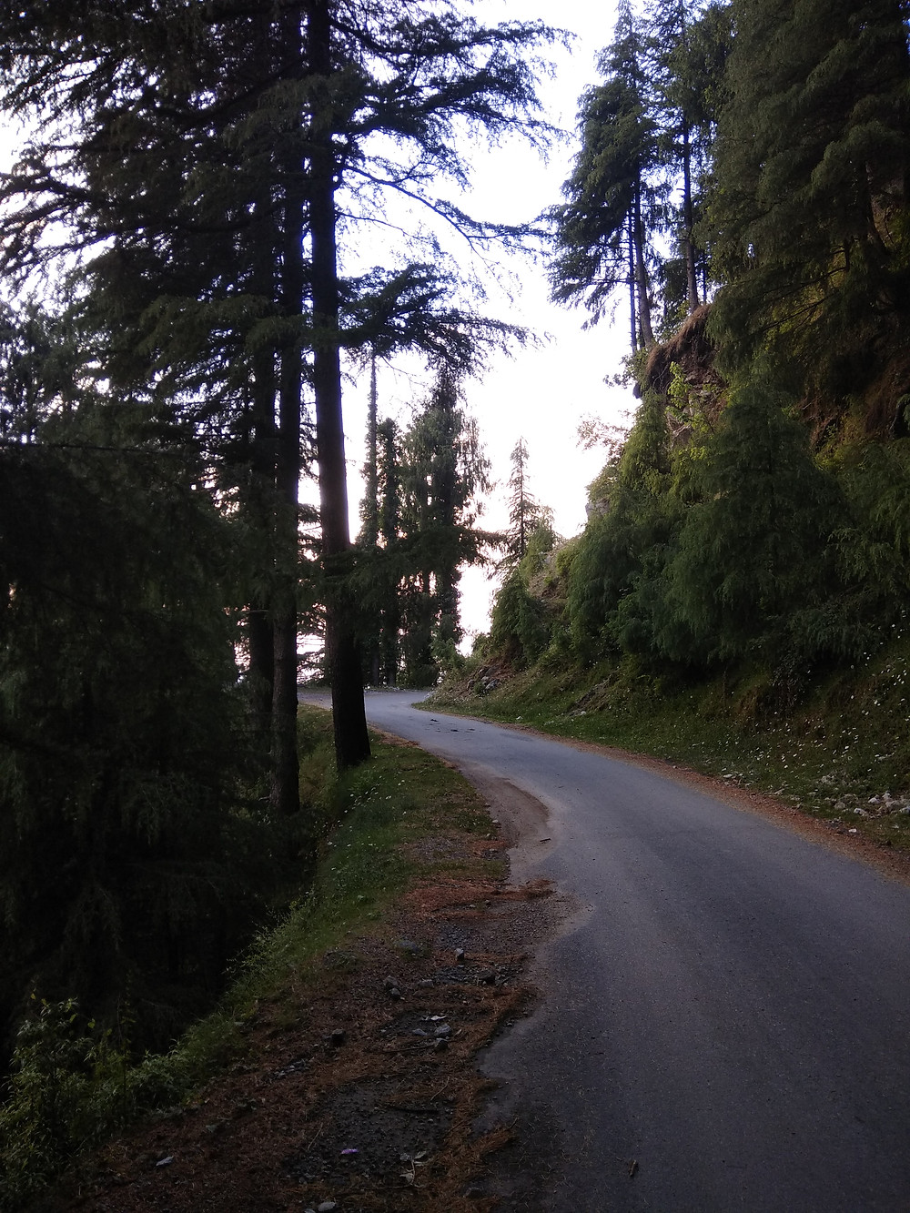 The beautiful roads of Dalhousie. ( E Kay)