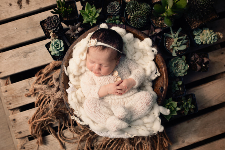How to Choose YOUR Newborn Photographer