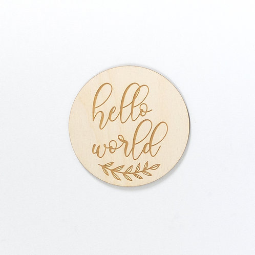 """Hello World"" Newborn Sign"