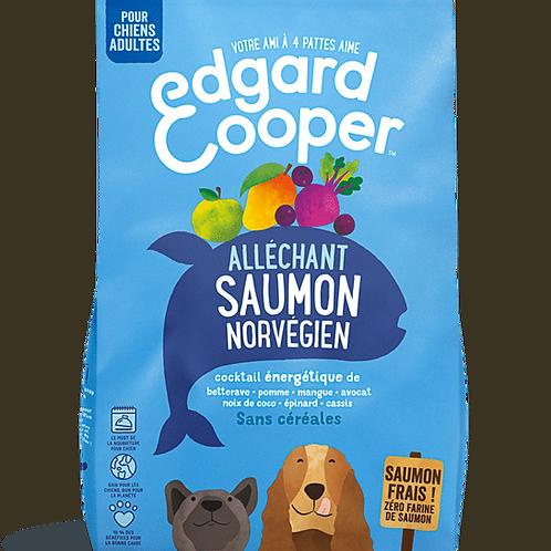 Edgard et Cooper au saumon norvégien