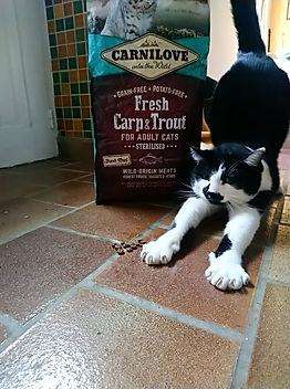 croquettes sans céréales Carnilove pour chat