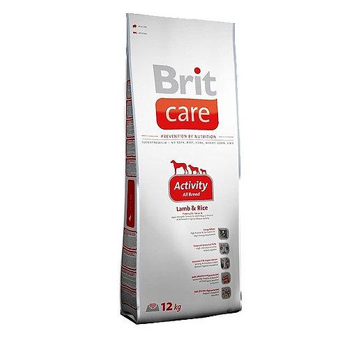BRIT Formule ACTIVITY / prix à partir de