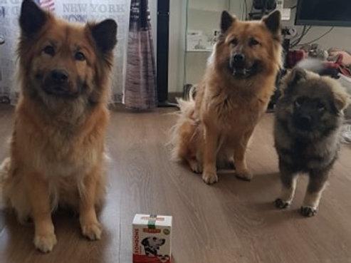 Friandises flore intestinale à la panse pour chien