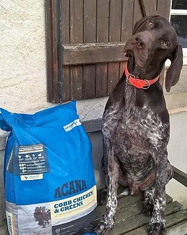 Croquettes sans céréales Acana pour chien