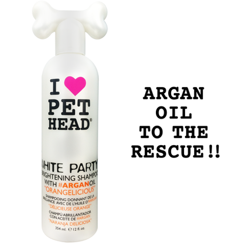 shampoing Pethead White Party