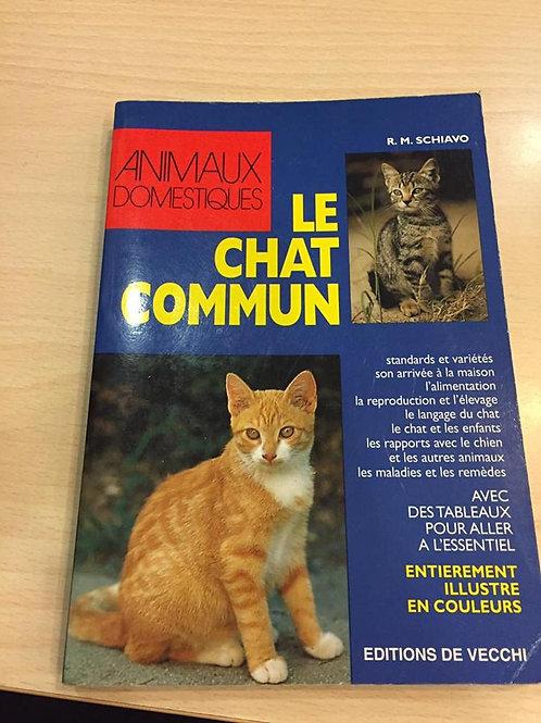 Le chat commun