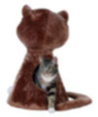 Accessoires, laisses et harnais pour chat, arbres à chat, jeux éducatifs, griffoirs