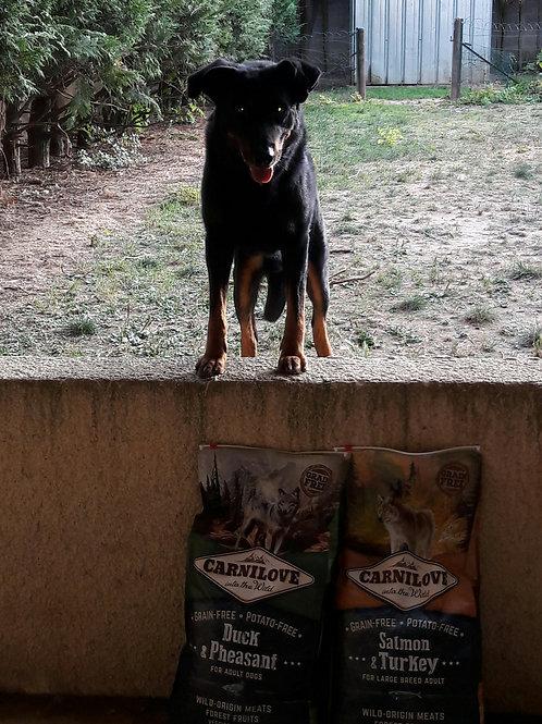 CARNILOVE Canard & Faisan pour chiens adultes