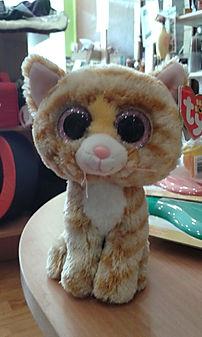 occasions pour chat vérifiées par la boutique, dépôt vente