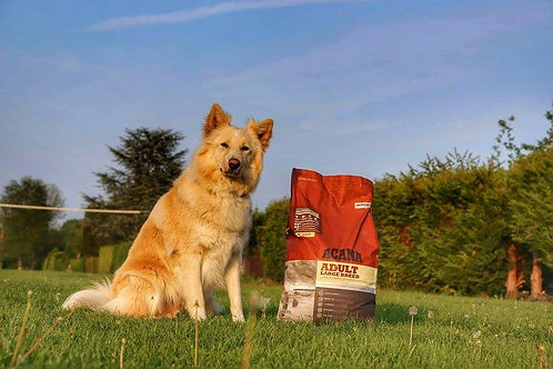 Acana formule CHIEN LARGE BREED