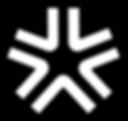 Logo BREGMAN Innovation Group (BIG)