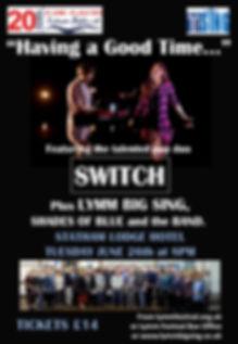 Festval 2018 switch poster2.jpg