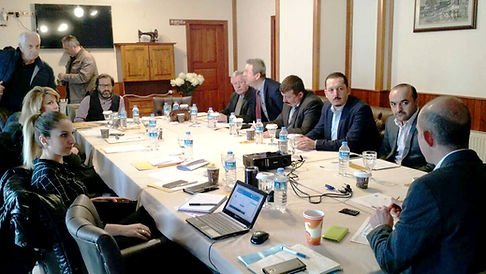 SRDI Turkey Strategic Planning Focus Group