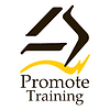 Promote Training Box Logo.png
