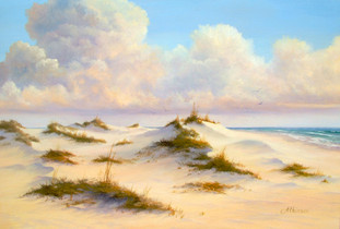 Sugar Bowl Dunes