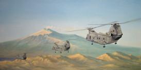 """HMM-162 """"Golden Eagles"""""""
