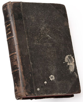 manuscrit-Hyéroglyphique1.jpg