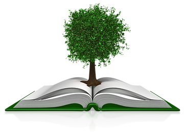 tree_in_a_book_800_clr_11720.png