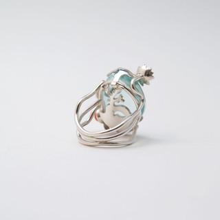 Ring onderwaterleven