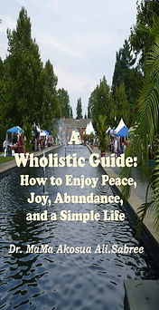 wholistic guide cover.jpg