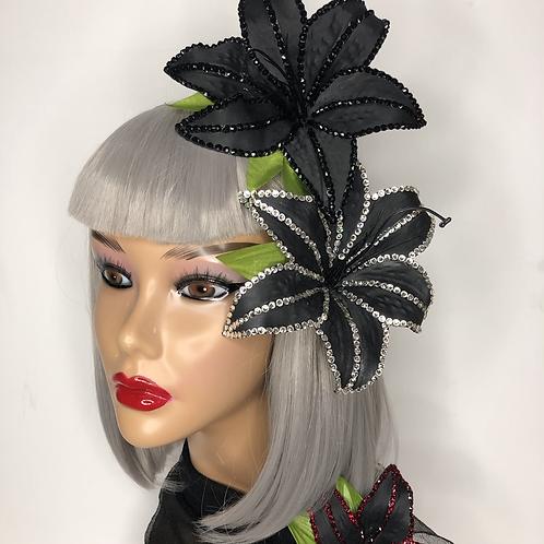 Echo Lily