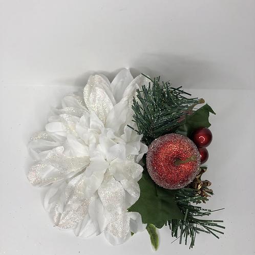 Winter fruit delight