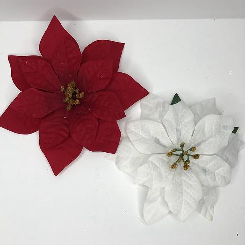 Poinsettia special