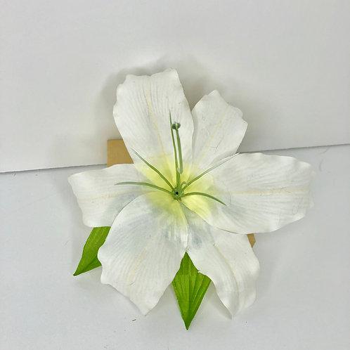 Rio lily