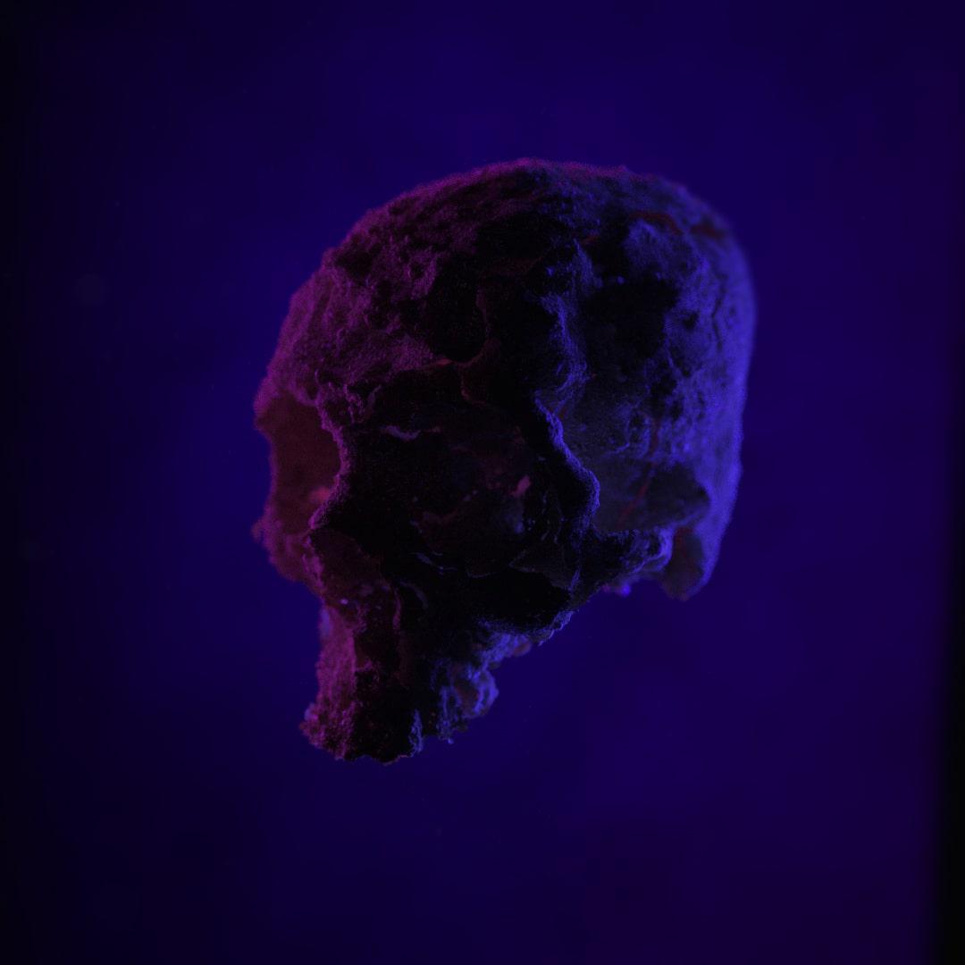 Boring Skull