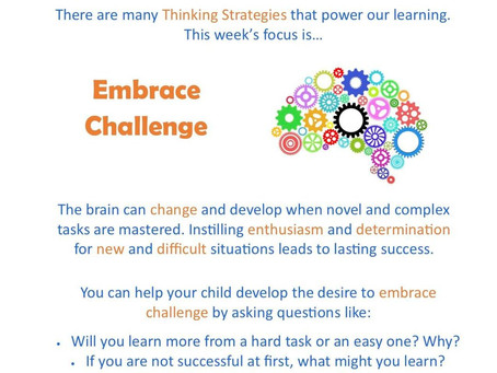 This week's focus: Embrace Challenge