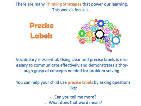 This week's focus: Precise Labels