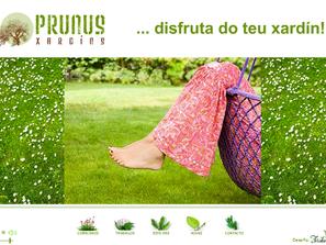 Diseño página web Prunus