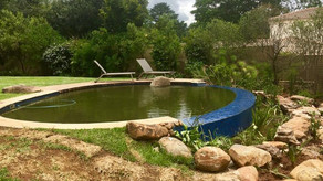 Natural Pool Rebuild