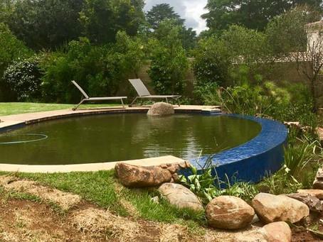 Natural Pool Rebuild